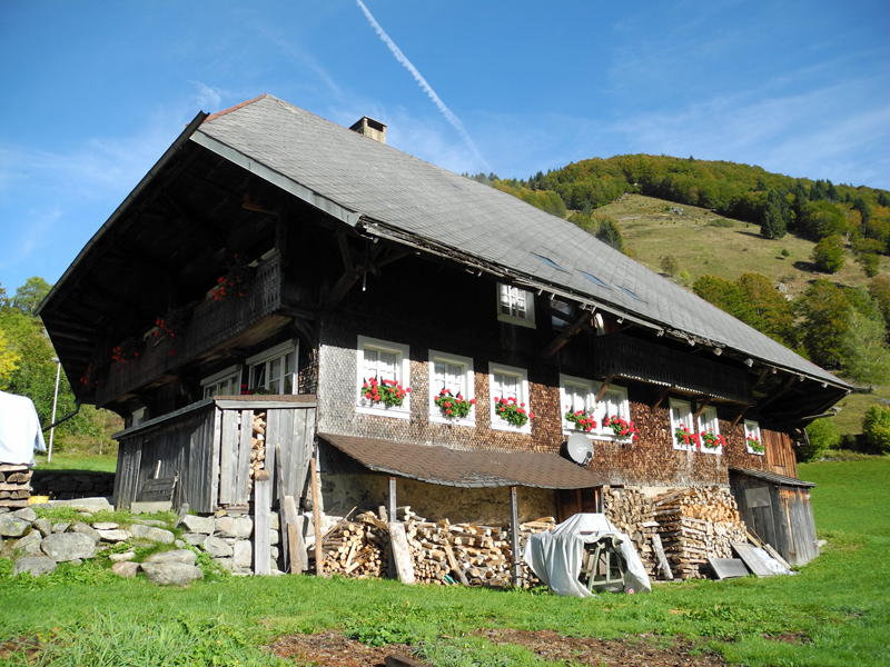Schwarzwaldromantik
